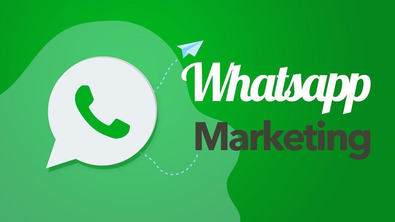 WhatsApp Marketing e sua importância no meio digital.